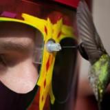 Hummingbird Mask Feeder