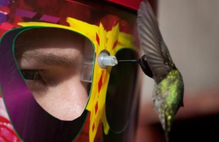 Feed The Birds Up Close & Personal With A Wearable Hummingbird Feeder Mask