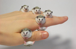 These Adorable Animal Rings Cling To Your Fingers