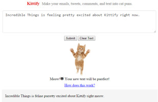 This Website Turns Your Regular Text Into Glorious Cat Puns