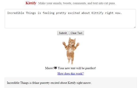 This Website Turns Your Regular Text Into Glorious Cat Puns