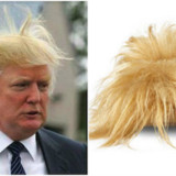 Donald Trump Hair Shoes