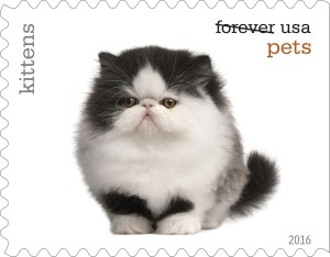 USPS Is Releasing Cat Stamps!