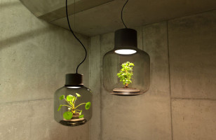 Your Place Is Gonna Need A Few Of These Cool Plant Lamps