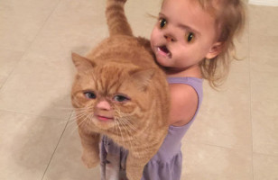 The Best/Worst Snapchat Face Swaps & More Incredible Links
