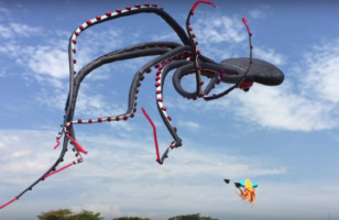 ♫ Let's Go Fly A Gigantic Octopus Kite With Tentacles ♫