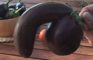 A VERY Suggestive Eggplant & More Incredible Links