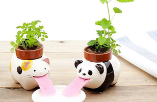 Super Cute Self-Watering Pots Look Like Little Animals Drinking