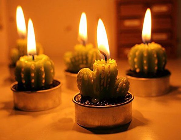 cactus-candles-1
