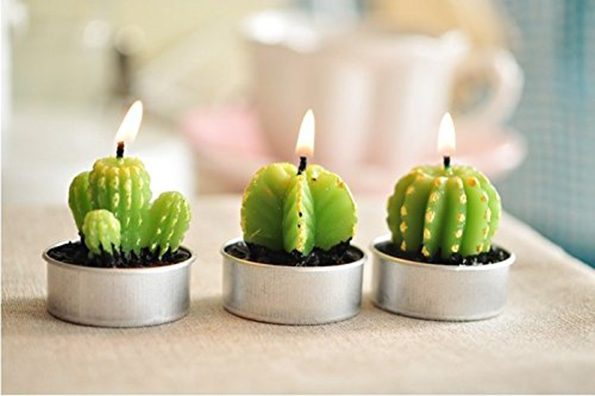 cactus-candles-2