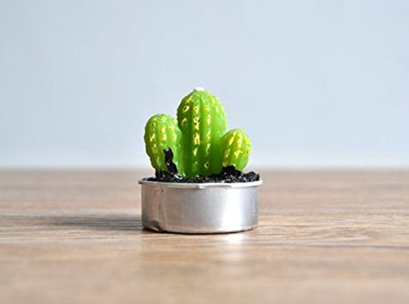 cactus-candles-4