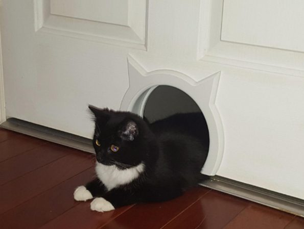 kitty-pass-cat-door-2 & Your Doors And Your Cats Both Desperately Need The Kitty Pass