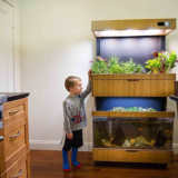 Self-Sustaining Garden/Aquarium Combo