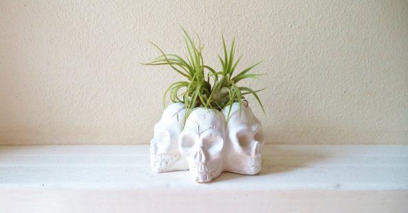 skull-planters-3