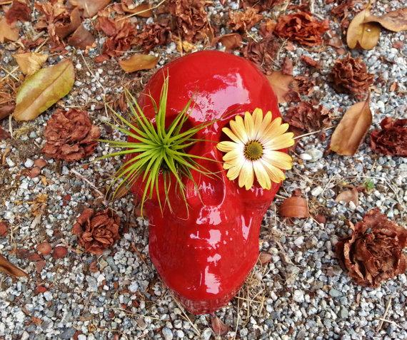 skull-planters-5