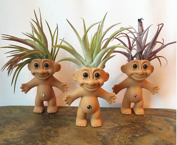A Plantroll Is A Troll Doll With An Air Plant For Hair