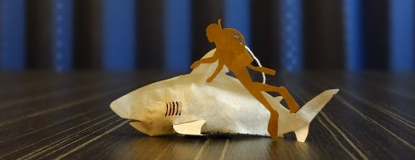 shark-tea-bags-2