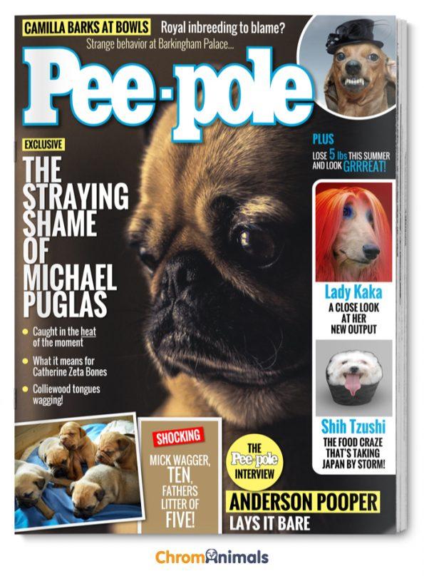 dog-magazines-10