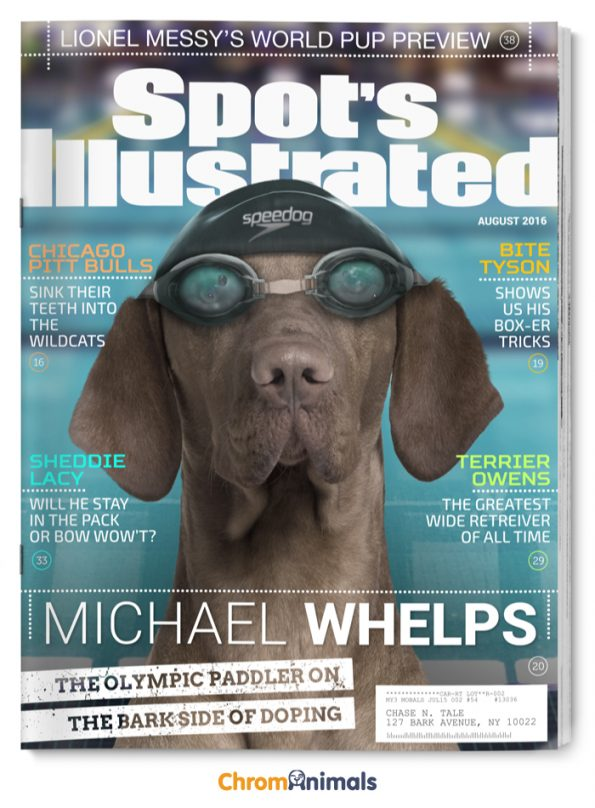 See Popular Magazines Reimagined As Dog Magazines
