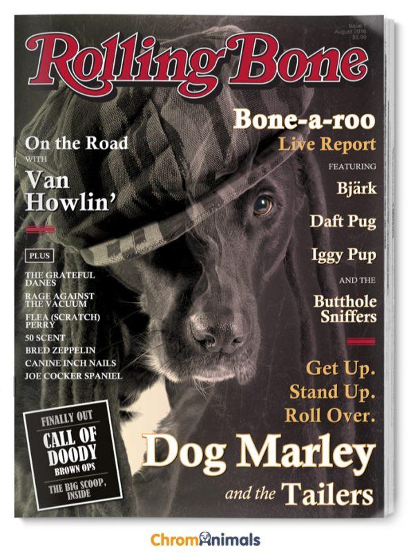 dog-magazines-5