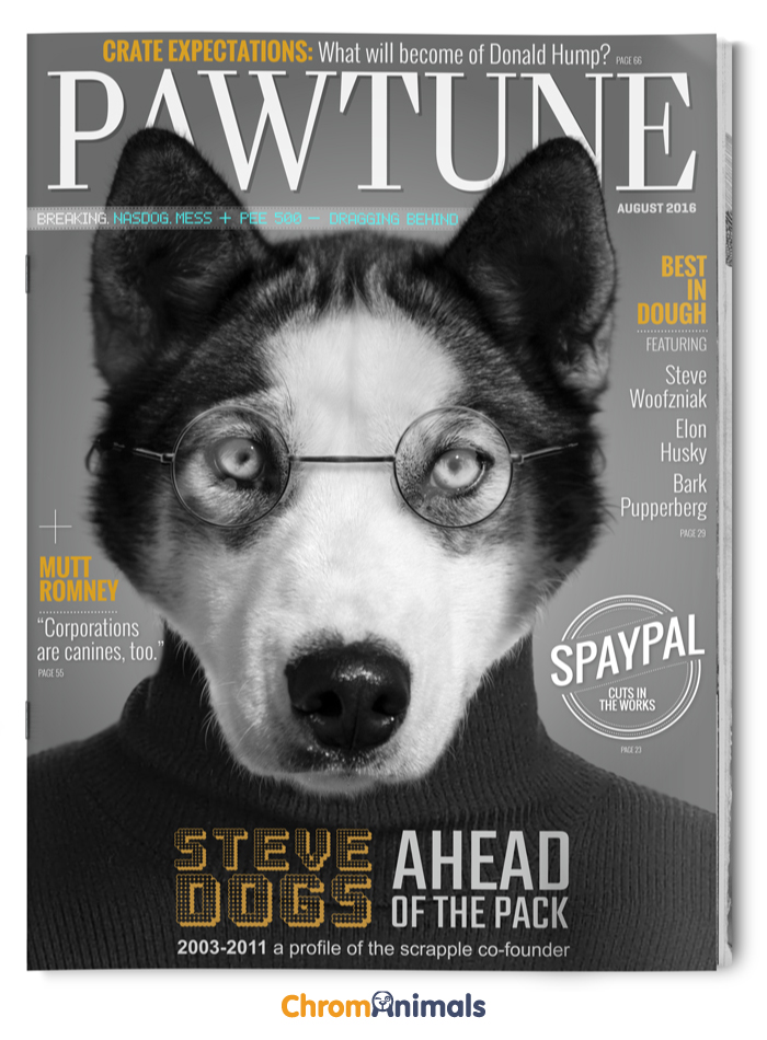 How To Get My Dog In Magazines