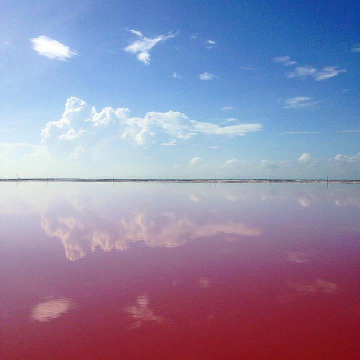 Pinke Lagune