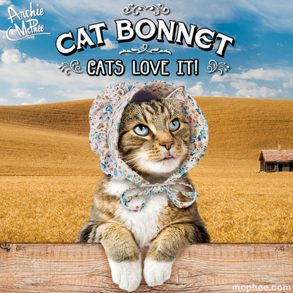 cat-bonnet-1