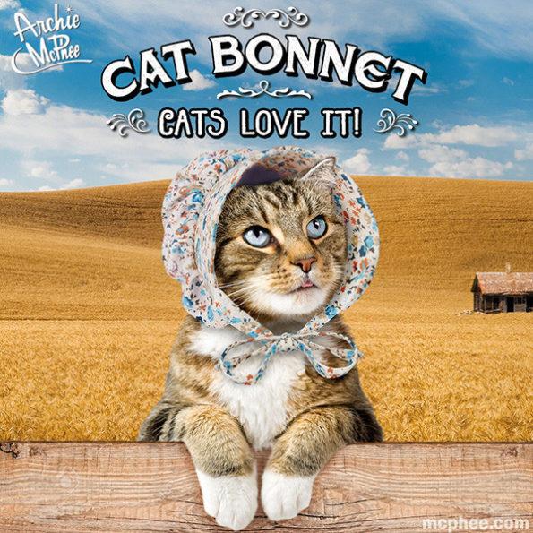 cat-bonnet-1