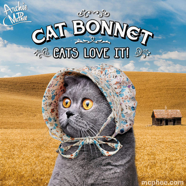 cat-bonnet-2