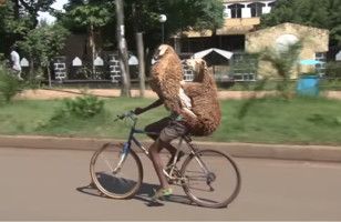 Let's All Marvel At This Guy Carrying Two Sheep On A Bicycle