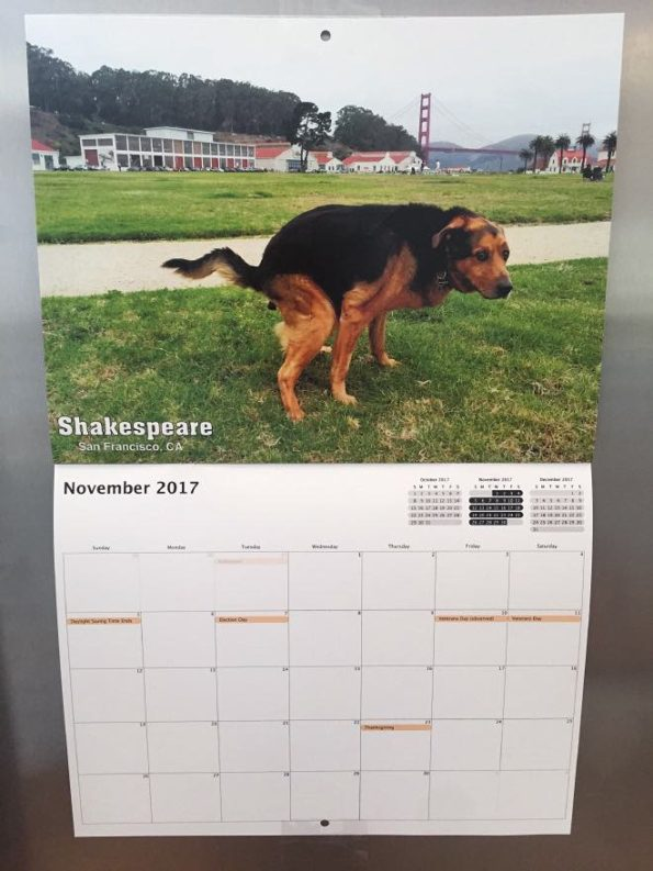 pooping-dogs-calendar-1