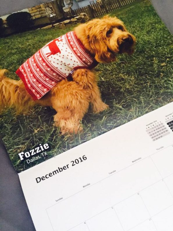 pooping-dogs-calendar-3