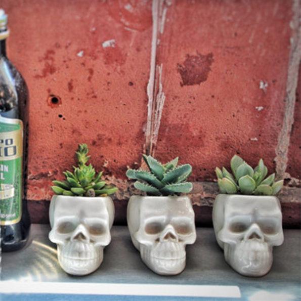 skull-planters