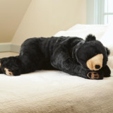 Bear Body Pillow