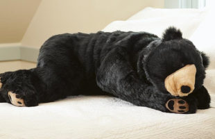 This Bear Body Pillow Is The Coziest Body Pillow There Is