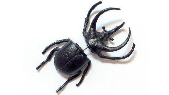 beetle-earring-1