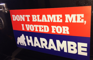 "GIVEAWAY: ""Don't Blame Me, I Voted For Harambe"" Sticker"