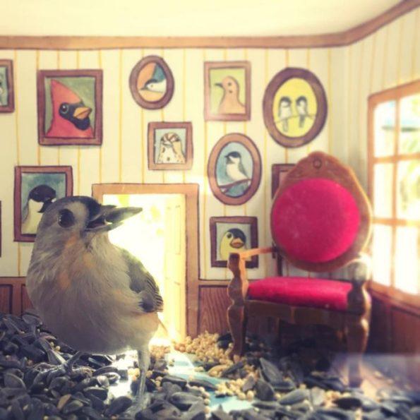 tiny-bird-friends-homes-jada-fitch-6