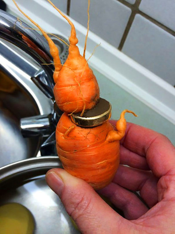 wedding-ring-carrot