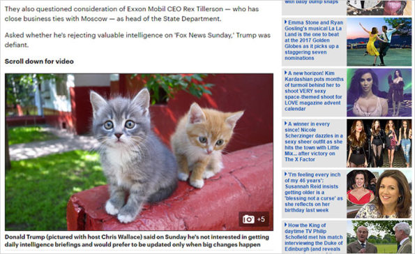 trump-chrome-extension-make-america-kittens-again-8-1