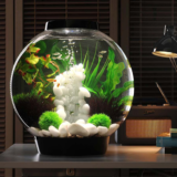 Aquarium & Terrarium Collection