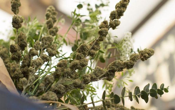 A Marijuana Bouquet For When Regular Flowers Won T Do