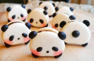 Panda Macarons & More Incredible Links