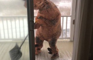 Watch This Lady In A T-Rex Suit Try To Shovel In A Blizzard
