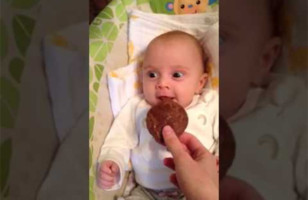 A Baby Smelling A Cookie For The First Time = Too Cute