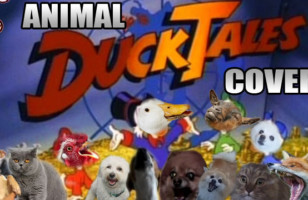 "Auto-Tuned Animals ""Sing"" The DuckTales Theme Song"