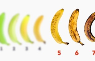 Wonderful Benefits Of Banana