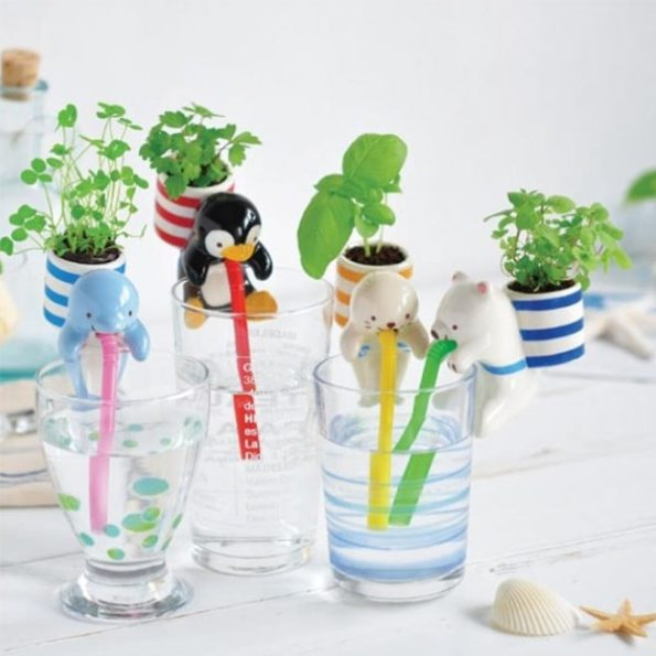 Adorable Ceramic Cultivation Kits by Chuppon