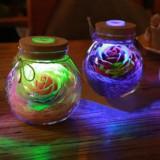 Romantic Illumination – Rose Light Bottle