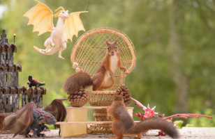 Game Of Thrones by Little Cute Squirrels